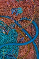 Brown and Blue Nets